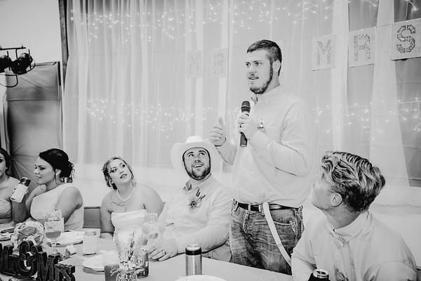 05090--©ADHPhotography2017--ClintBeguinShelbyCook--Wedding