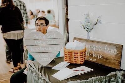 03269--©ADHPhotography2017--ClintBeguinShelbyCook--Wedding