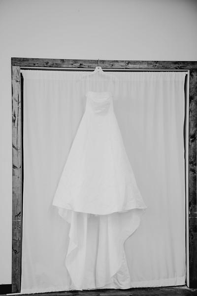 00094--©ADHPhotography2017--ClintBeguinShelbyCook--Wedding