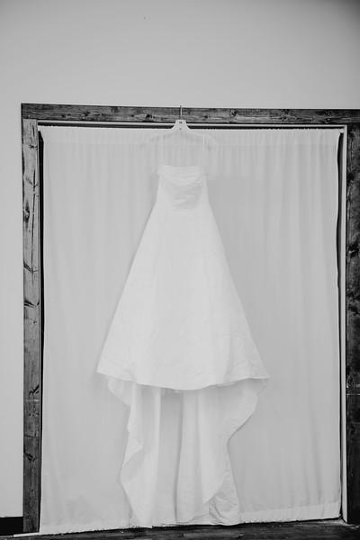 00096--©ADHPhotography2017--ClintBeguinShelbyCook--Wedding