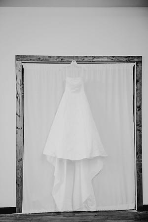 00100--©ADHPhotography2017--ClintBeguinShelbyCook--Wedding