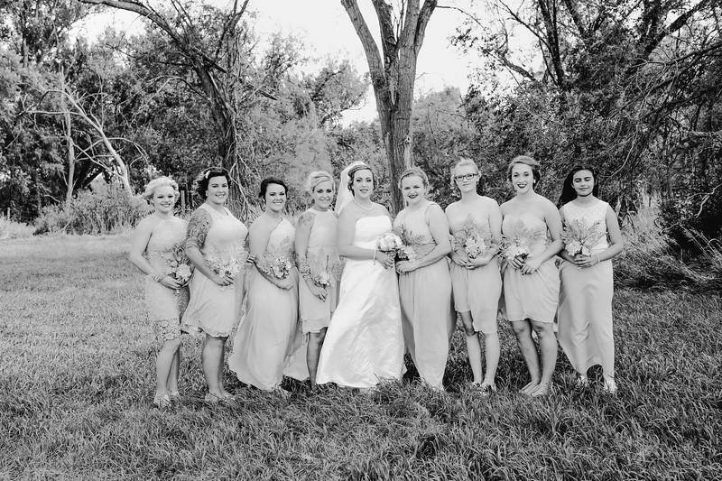 01272--©ADHPhotography2017--ClintBeguinShelbyCook--Wedding