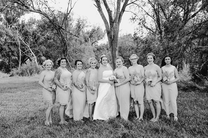 01262--©ADHPhotography2017--ClintBeguinShelbyCook--Wedding