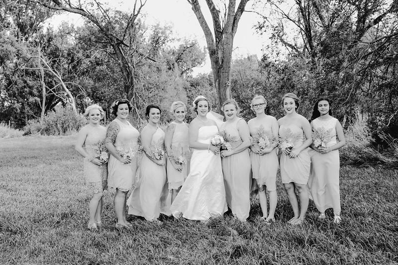 01256--©ADHPhotography2017--ClintBeguinShelbyCook--Wedding