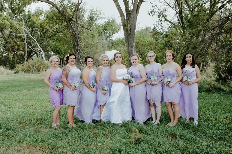 01253--©ADHPhotography2017--ClintBeguinShelbyCook--Wedding