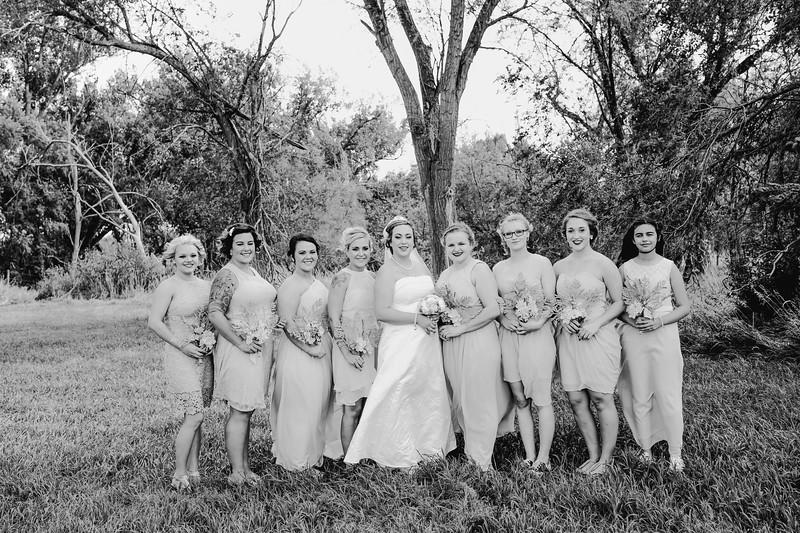 01264--©ADHPhotography2017--ClintBeguinShelbyCook--Wedding