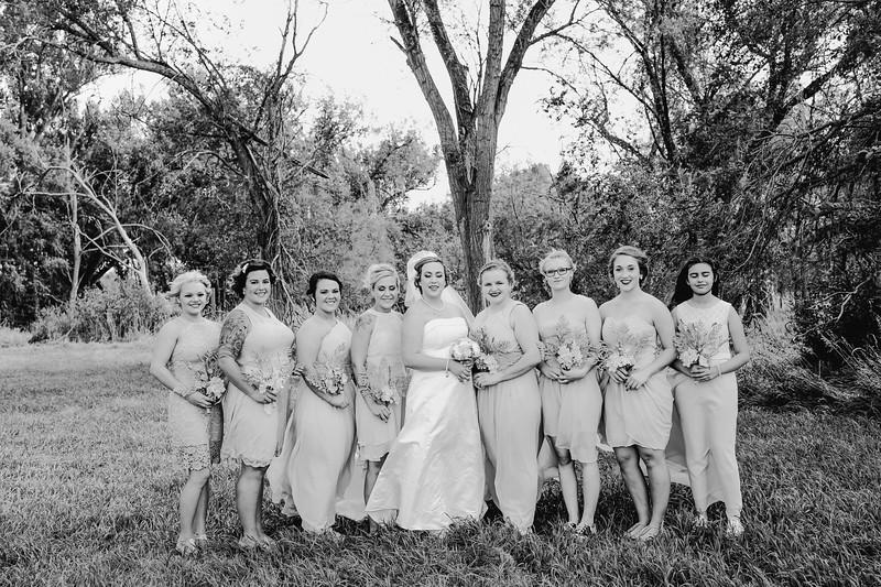 01266--©ADHPhotography2017--ClintBeguinShelbyCook--Wedding