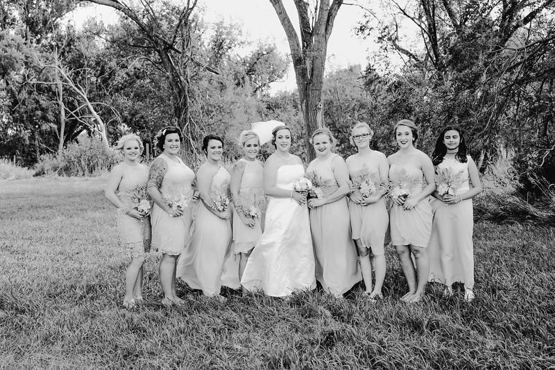 01254--©ADHPhotography2017--ClintBeguinShelbyCook--Wedding