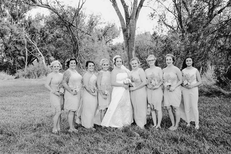 01258--©ADHPhotography2017--ClintBeguinShelbyCook--Wedding