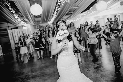 06716--©ADHPhotography2017--HeathBrownReneeFelber--Wedding