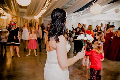 06693--©ADHPhotography2017--HeathBrownReneeFelber--Wedding