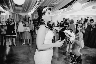 06696--©ADHPhotography2017--HeathBrownReneeFelber--Wedding