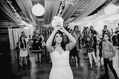 06708--©ADHPhotography2017--HeathBrownReneeFelber--Wedding