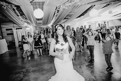 06712--©ADHPhotography2017--HeathBrownReneeFelber--Wedding