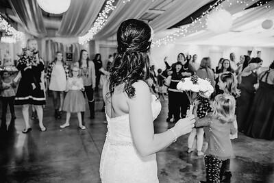 06694--©ADHPhotography2017--HeathBrownReneeFelber--Wedding