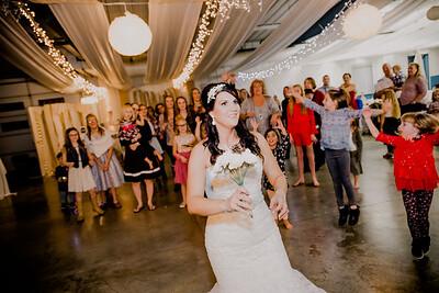 06713--©ADHPhotography2017--HeathBrownReneeFelber--Wedding