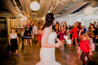 06697--©ADHPhotography2017--HeathBrownReneeFelber--Wedding