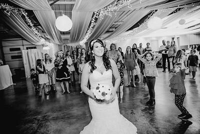 06710--©ADHPhotography2017--HeathBrownReneeFelber--Wedding