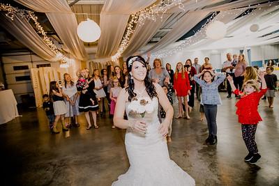 06711--©ADHPhotography2017--HeathBrownReneeFelber--Wedding