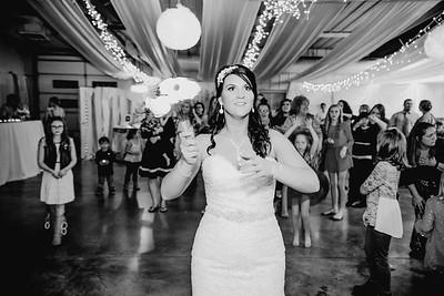 06702--©ADHPhotography2017--HeathBrownReneeFelber--Wedding