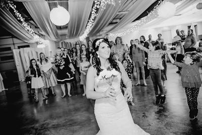 06714--©ADHPhotography2017--HeathBrownReneeFelber--Wedding