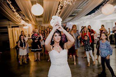 06707--©ADHPhotography2017--HeathBrownReneeFelber--Wedding