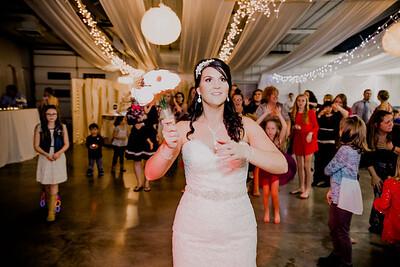 06701--©ADHPhotography2017--HeathBrownReneeFelber--Wedding
