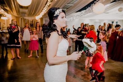 06695--©ADHPhotography2017--HeathBrownReneeFelber--Wedding