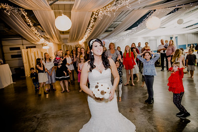 06709--©ADHPhotography2017--HeathBrownReneeFelber--Wedding