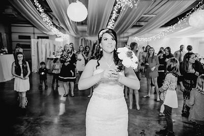 06704--©ADHPhotography2017--HeathBrownReneeFelber--Wedding