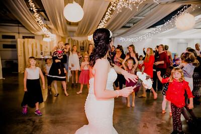 06699--©ADHPhotography2017--HeathBrownReneeFelber--Wedding