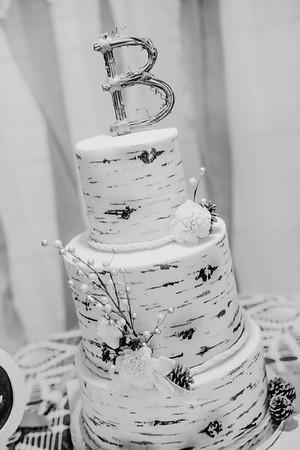 04912--©ADHPhotography2017--HeathBrownReneeFelber--Wedding