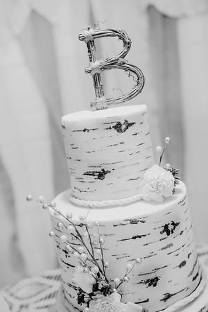 04910--©ADHPhotography2017--HeathBrownReneeFelber--Wedding