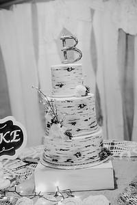 04894--©ADHPhotography2017--HeathBrownReneeFelber--Wedding
