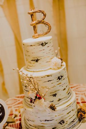 04913--©ADHPhotography2017--HeathBrownReneeFelber--Wedding