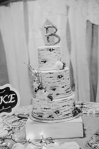 04892--©ADHPhotography2017--HeathBrownReneeFelber--Wedding