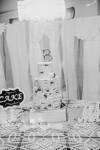 04904--©ADHPhotography2017--HeathBrownReneeFelber--Wedding