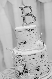 04908--©ADHPhotography2017--HeathBrownReneeFelber--Wedding