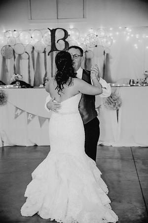 06174--©ADHPhotography2017--HeathBrownReneeFelber--Wedding