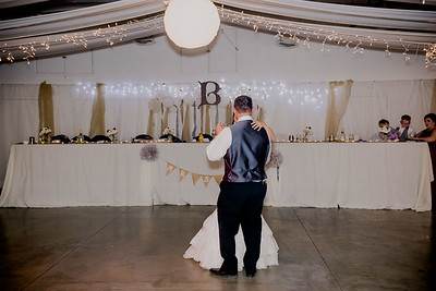 06161--©ADHPhotography2017--HeathBrownReneeFelber--Wedding