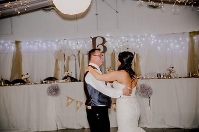 06169--©ADHPhotography2017--HeathBrownReneeFelber--Wedding