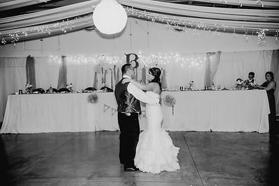 06166--©ADHPhotography2017--HeathBrownReneeFelber--Wedding