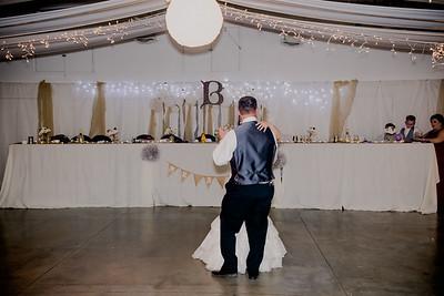 06163--©ADHPhotography2017--HeathBrownReneeFelber--Wedding