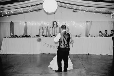 06162--©ADHPhotography2017--HeathBrownReneeFelber--Wedding