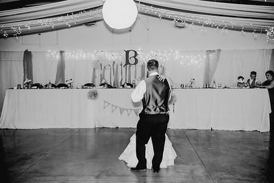 06164--©ADHPhotography2017--HeathBrownReneeFelber--Wedding