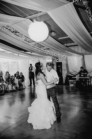 06052--©ADHPhotography2017--HeathBrownReneeFelber--Wedding