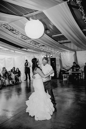 06050--©ADHPhotography2017--HeathBrownReneeFelber--Wedding