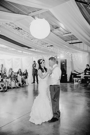 06056--©ADHPhotography2017--HeathBrownReneeFelber--Wedding
