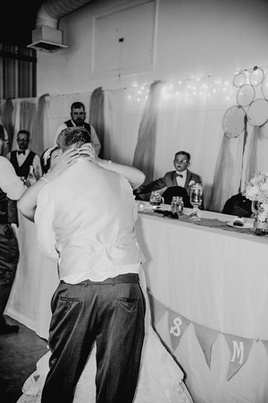 05224--©ADHPhotography2017--HeathBrownReneeFelber--Wedding