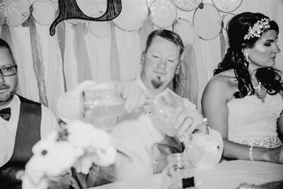 05490--©ADHPhotography2017--HeathBrownReneeFelber--Wedding
